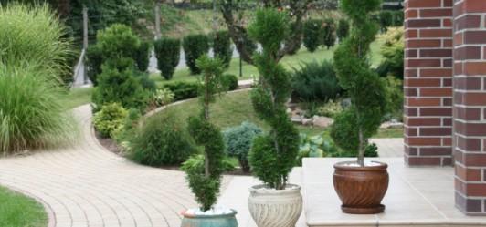 Konkurs Ogród Malowany